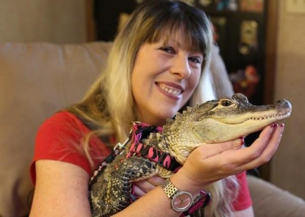 女子养鳄鱼当宠物 为其刷牙美甲