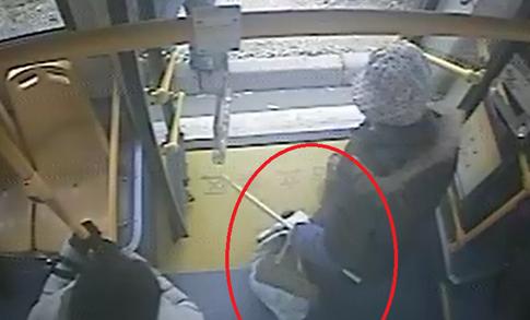 老人将宠物犬塞布袋乘公交 司机劝说无果报警