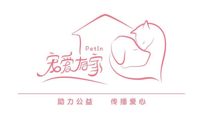 """全国首个宠物公益社群""""宠爱有家""""在汉上线"""