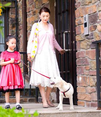 小狗奶瓶》街头采访神回复 家庭宠物限令引共鸣