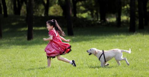小狗奶瓶》携手耐吉斯宠物粮传达养宠新观念