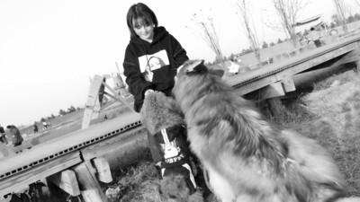 """女孩租百亩林地让宠物体面""""善终"""""""