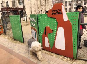 东丽区建宠物乐园维护环境卫生 解决污染问题