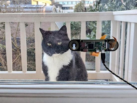 """工程师自制""""猫脸识别""""门禁 宠物回家更方便"""
