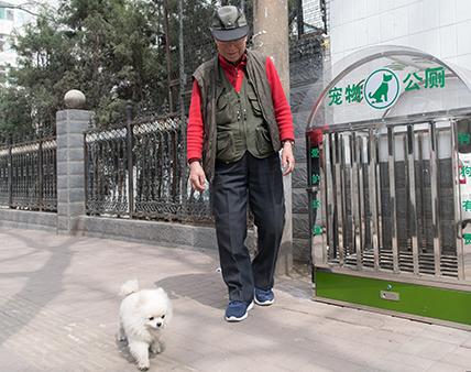 """太原街头现""""宠物公厕"""""""