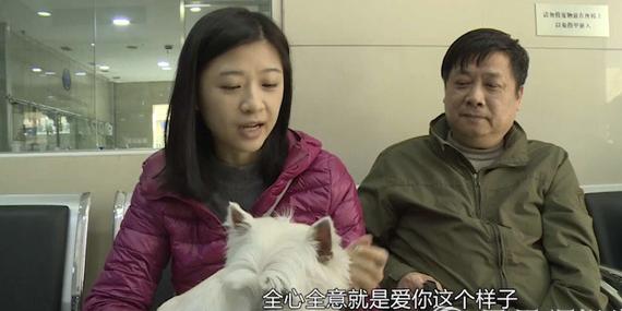 《此时此刻》百岁宠物狗重病缠身 主人一家如何抉择?