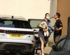 熊黛林挺孕肚和老公去宠物医院 一个细节显情商高