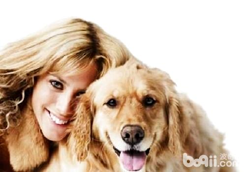 狗狗是通过什么方式来辨认自己主人的?