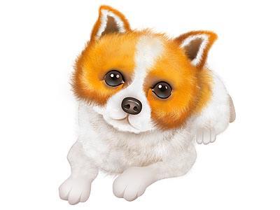 年幼狗狗易患上传染性肠炎