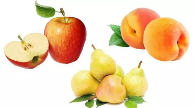 狗狗哪些水果能吃哪些不能吃?