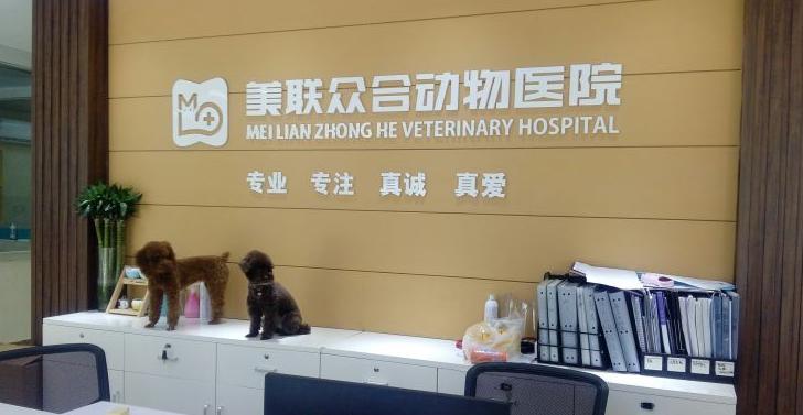 美联众合动物医院(和美分院)