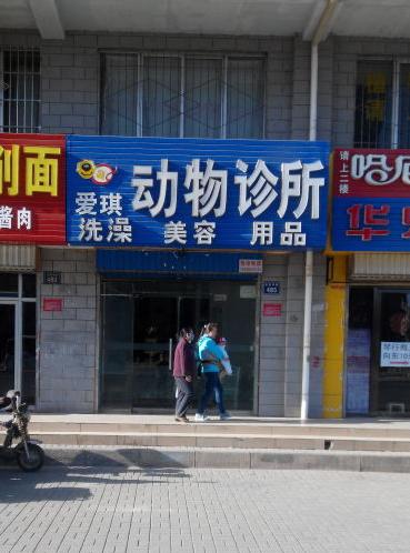 爱琪动物医院(新城分院)