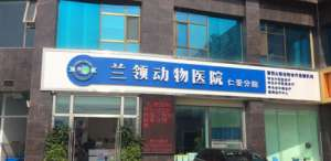 兰领动物医院(仁爱分院)