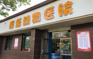 康乐动物医院(分店)