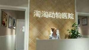 淘淘动物医院(春城慧谷分院)