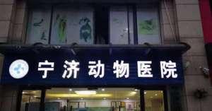 宁济动物医院