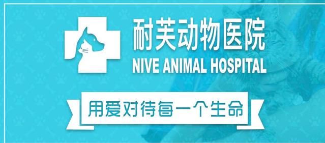 耐芙动物医院(南村万博中心店)
