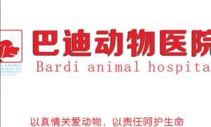 巴迪动物医院(望园路店)