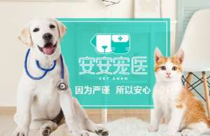 安安宠医(安其宠物医院店)