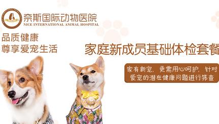 奈斯国际动物医院(深度医疗中心)