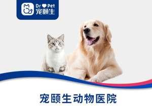 宠颐生聚宠宠物医院(猫病犬病全科中心)