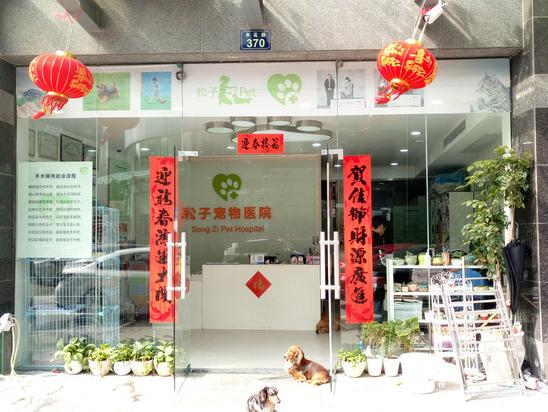 松子宠物医院(申花路店)