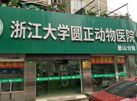 浙江大学动物医院(萧山分院)