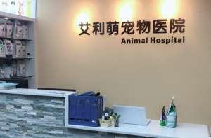 艾利萌宠物医院