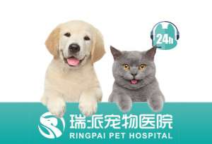 瑞派曹浪峰宠物医院(古墩店)