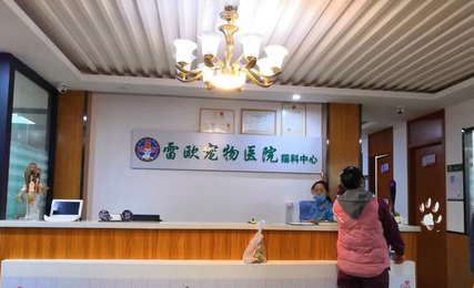 雷欧宠物医院猫科中心店