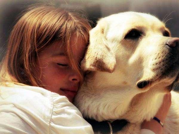 五类不适合养狗的人群,其中有你吗?
