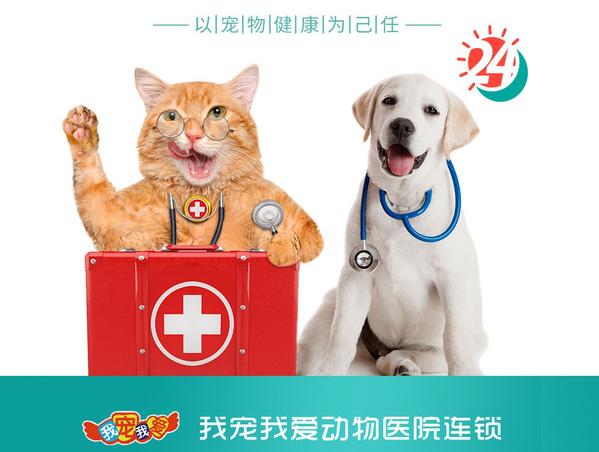 我宠我爱动物医院(沈阳沈河店)