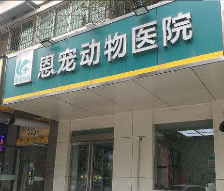 恩宠动物医院(航海路店)