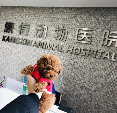 康信动物医院