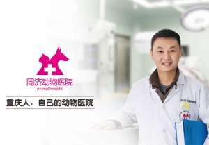 24小时同济动物医院总院(龙湖西苑店)