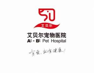 艾贝尔动物医院(大龙山分院)