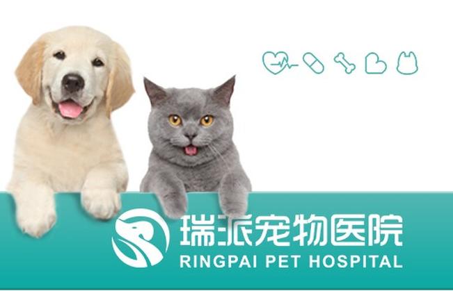 瑞派长江动物医院(开发区分院)