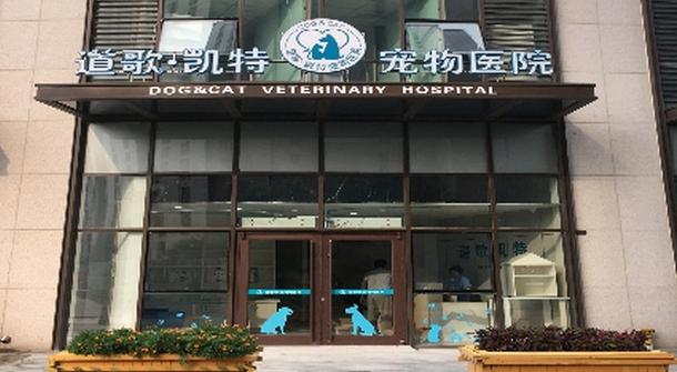 道歌·凯特宠物医院
