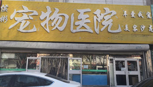 侯彬宠物医院((建设大街店))