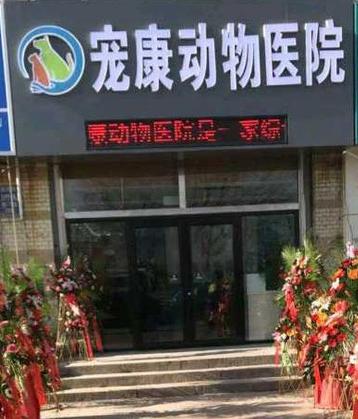 宠康动物医院(西港路店)