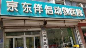 京东伴侣动物医院