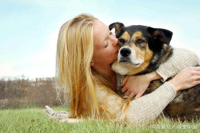 狗狗总是要主人抱,特别粘人怎么办?