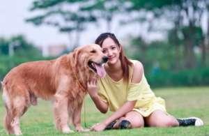 如何训练狗狗的独立生活能力?