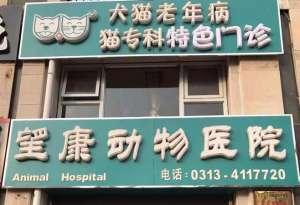 望康动物医院(桥东区)