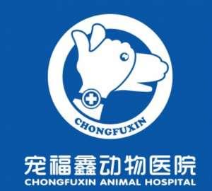 宠福鑫动物医院(桥东区总院)