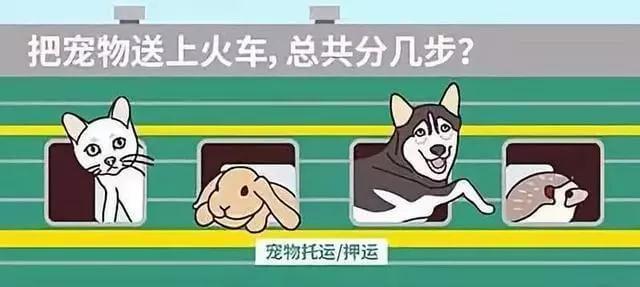 狗狗能坐火车回家吗?