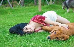 夏天养狗的五个注意事项!