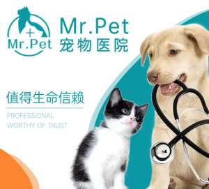 Mr. Pet动物医院(长治路分院)