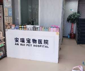 安瑞宠物医院